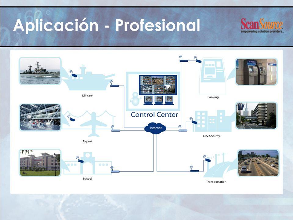 Aplicación - Profesional