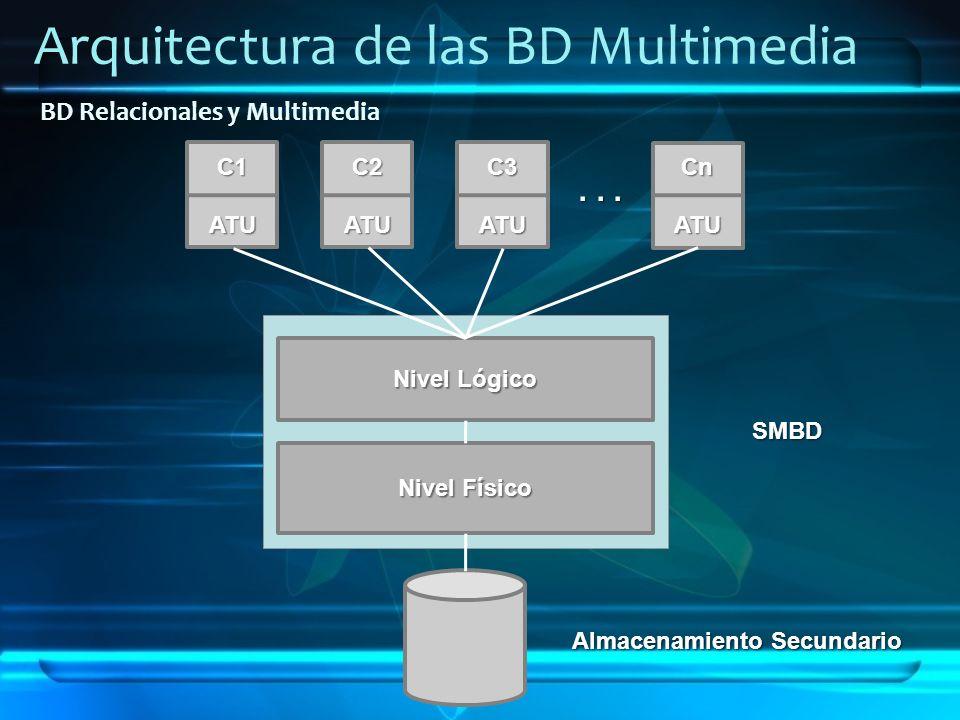 Arquitectura de las BD Multimedia