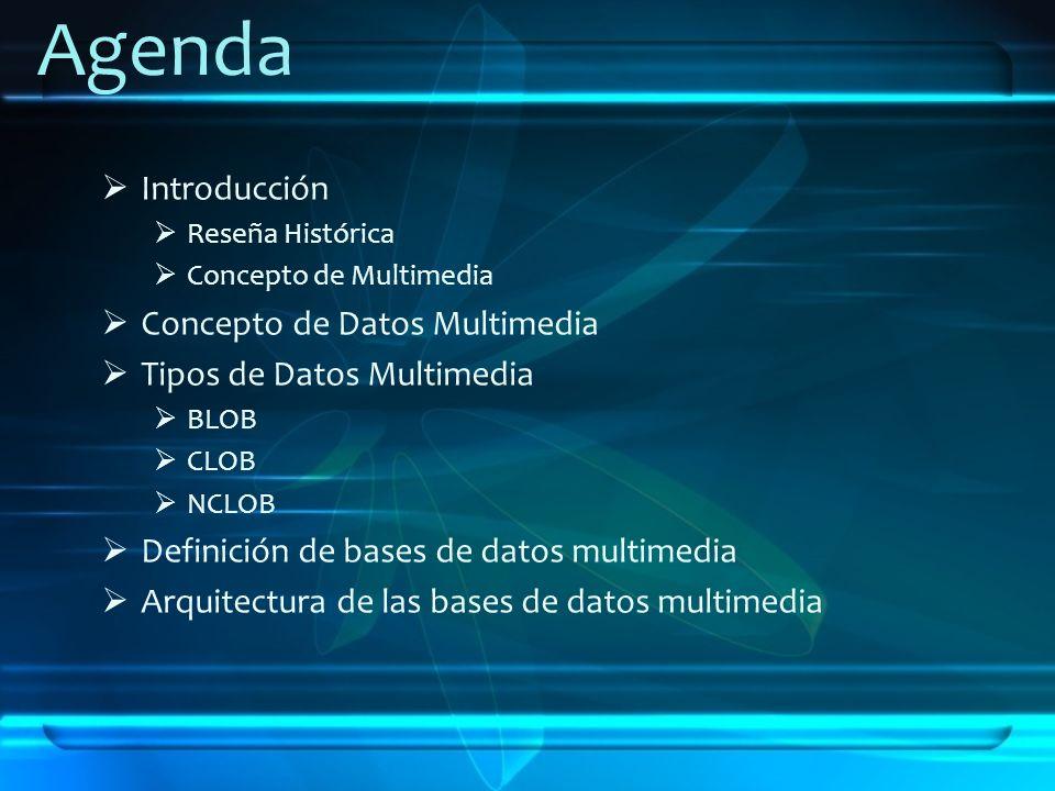 Agenda Introducción Concepto de Datos Multimedia