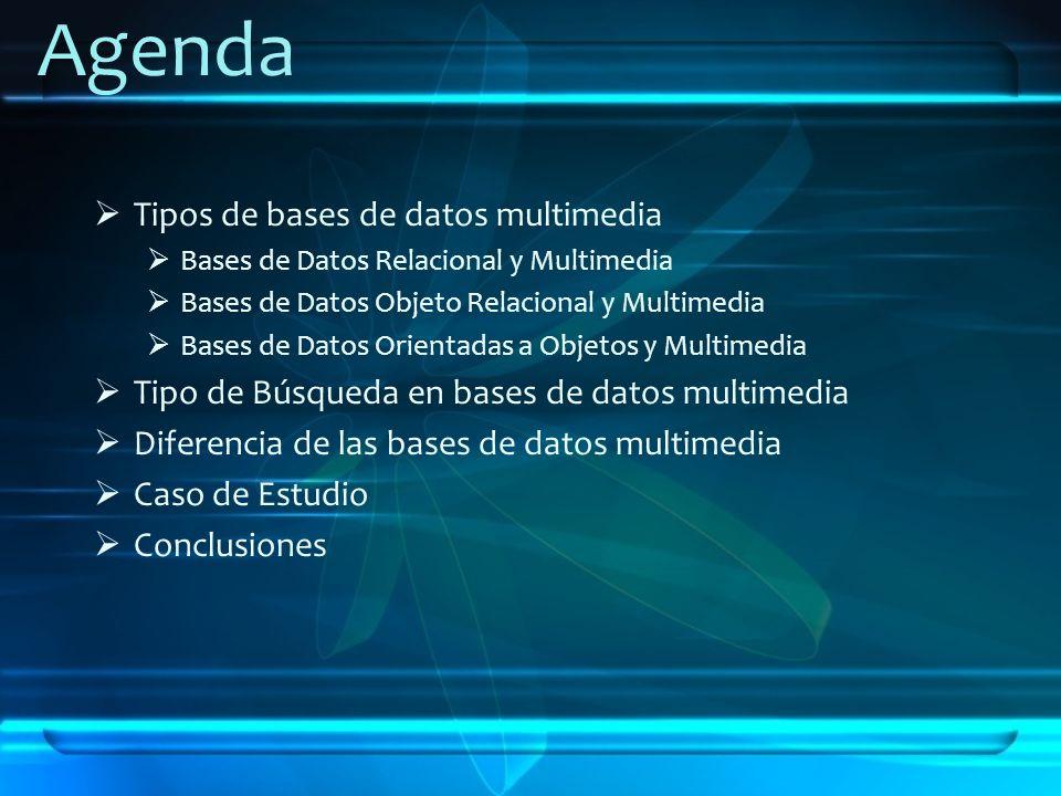 Agenda Tipos de bases de datos multimedia