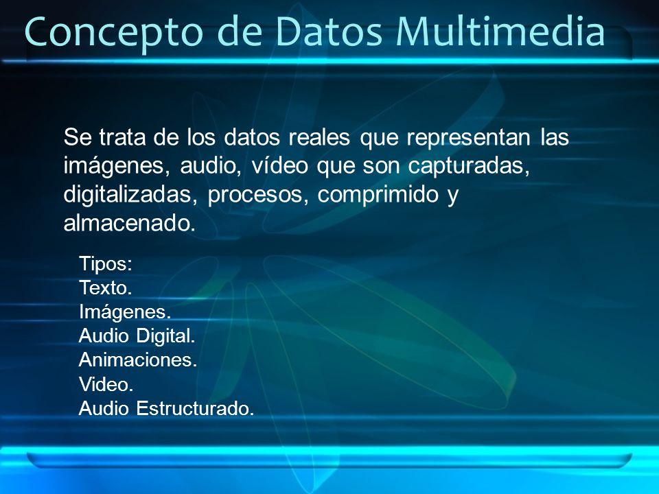 Concepto de Datos Multimedia
