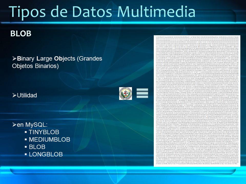 Tipos de Datos Multimedia