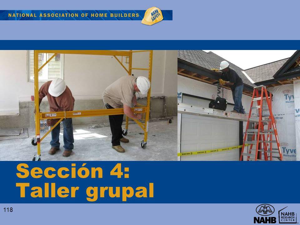 Sección 4: Taller grupal