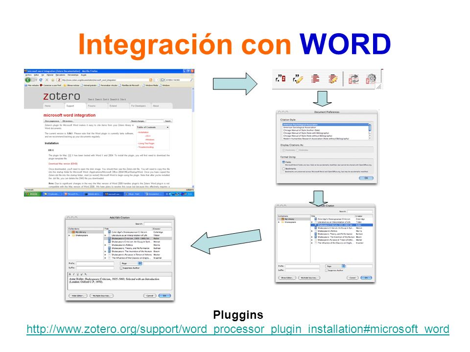 Integración con WORD Pluggins