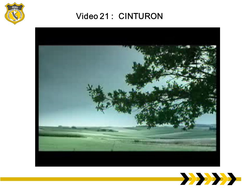Video 21 : CINTURON