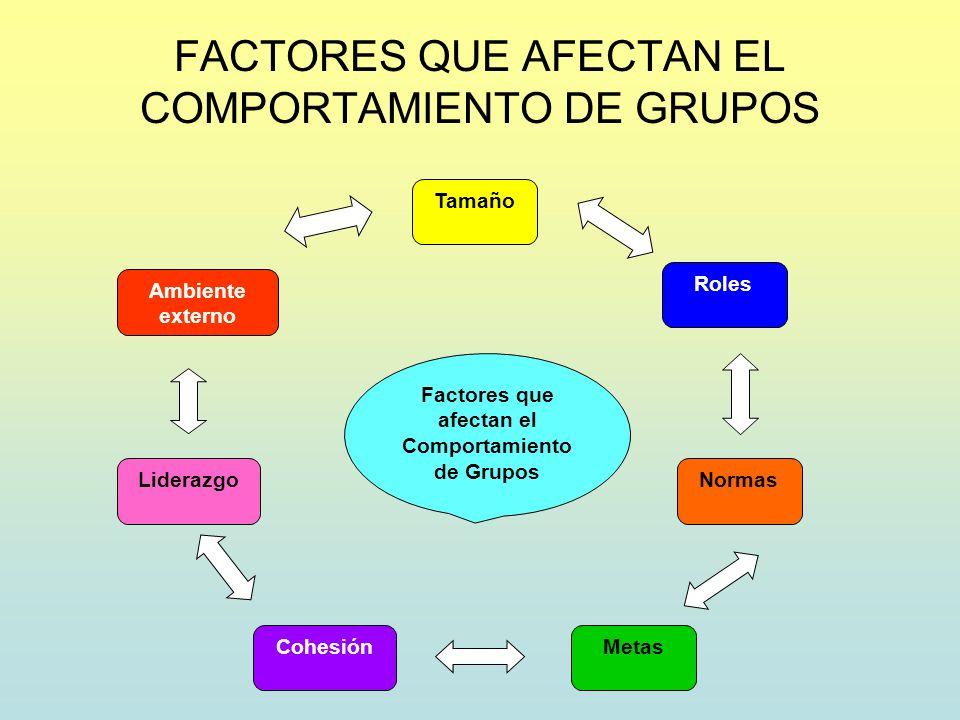 FACTORES QUE AFECTAN EL COMPORTAMIENTO DE GRUPOS