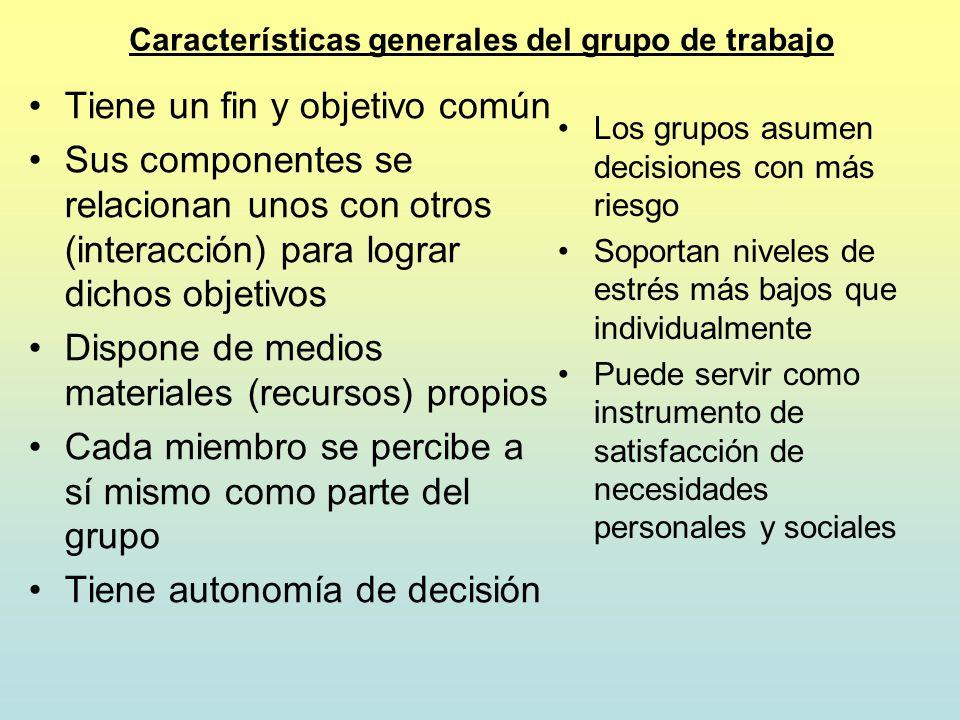Características generales del grupo de trabajo