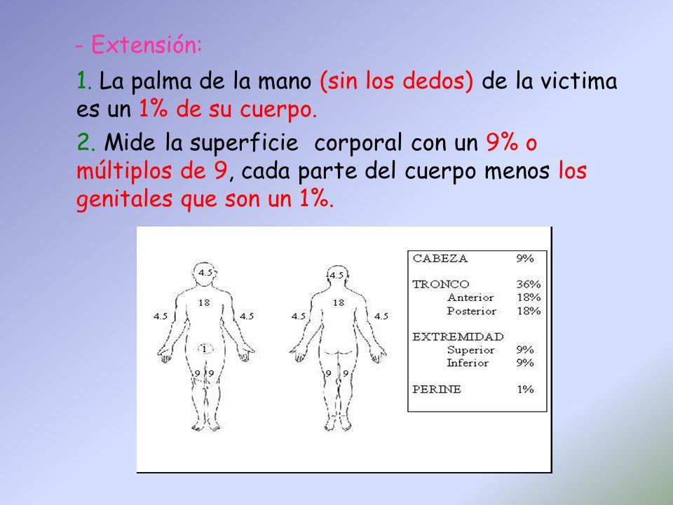 - Extensión: La palma de la mano (sin los dedos) de la victima es un 1% de su cuerpo.