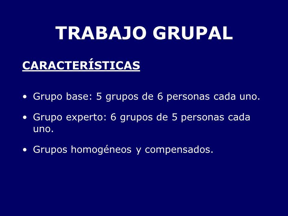 TRABAJO GRUPAL CARACTERÍSTICAS