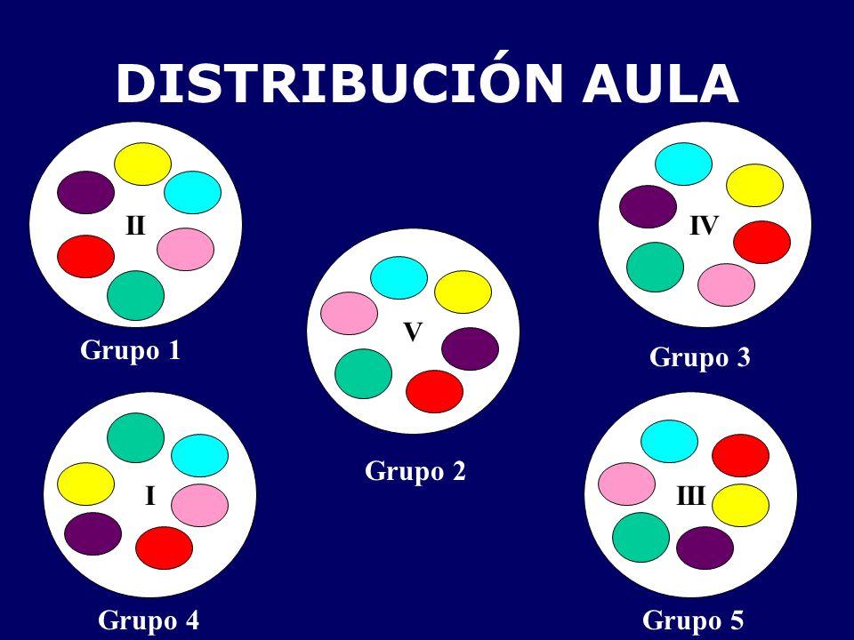 DISTRIBUCIÓN AULA II IV V Grupo 1 Grupo 3 I III Grupo 2 Grupo 4