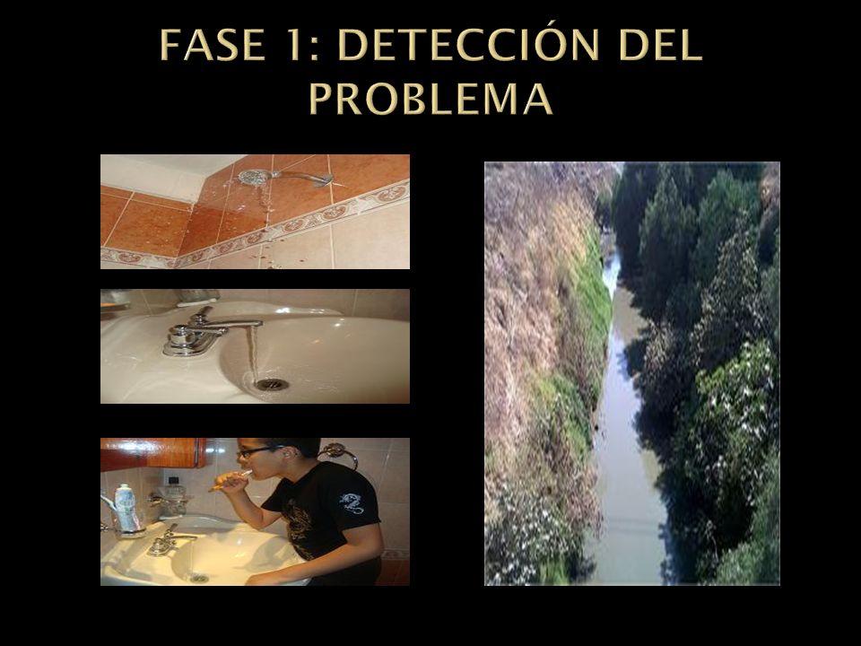 FASE 1: DETECCIÓN DEL PROBLEMA