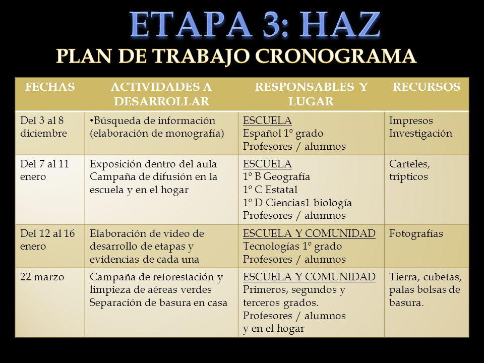 PLAN DE TRABAJO CRONOGRAMA ACTIVIDADES A DESARROLLAR