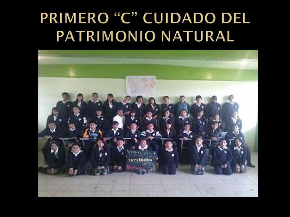 PRIMERO C CUIDADO DEL PATRIMONIO NATURAL
