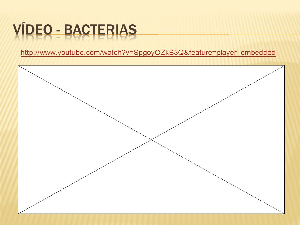 Vídeo - Bacterias http://www.youtube.com/watch v=SpgoyOZkB3Q&feature=player_embedded
