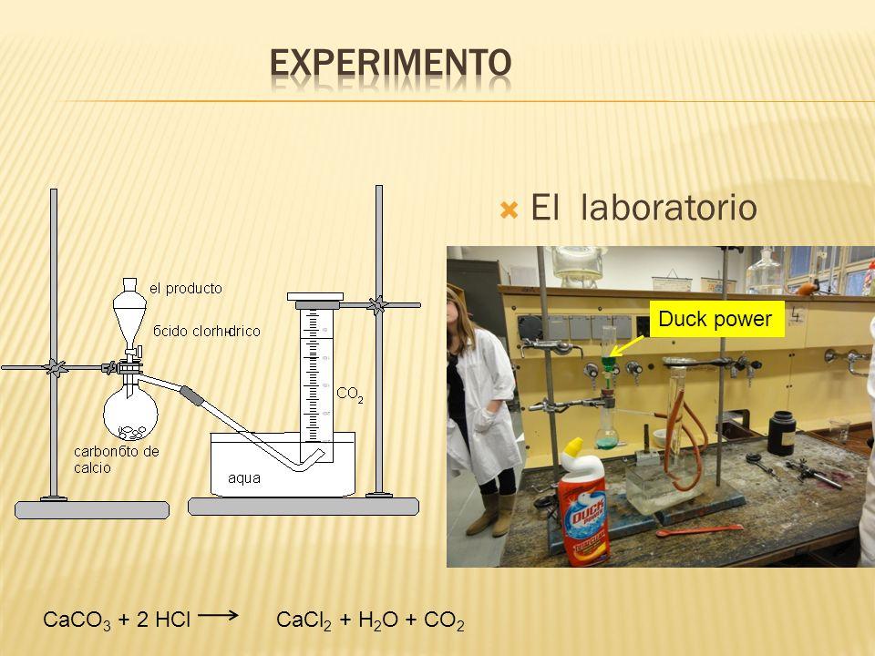 Experimento El laboratorio Duck power CaCO3 + 2 HCl CaCl2 + H2O + CO2