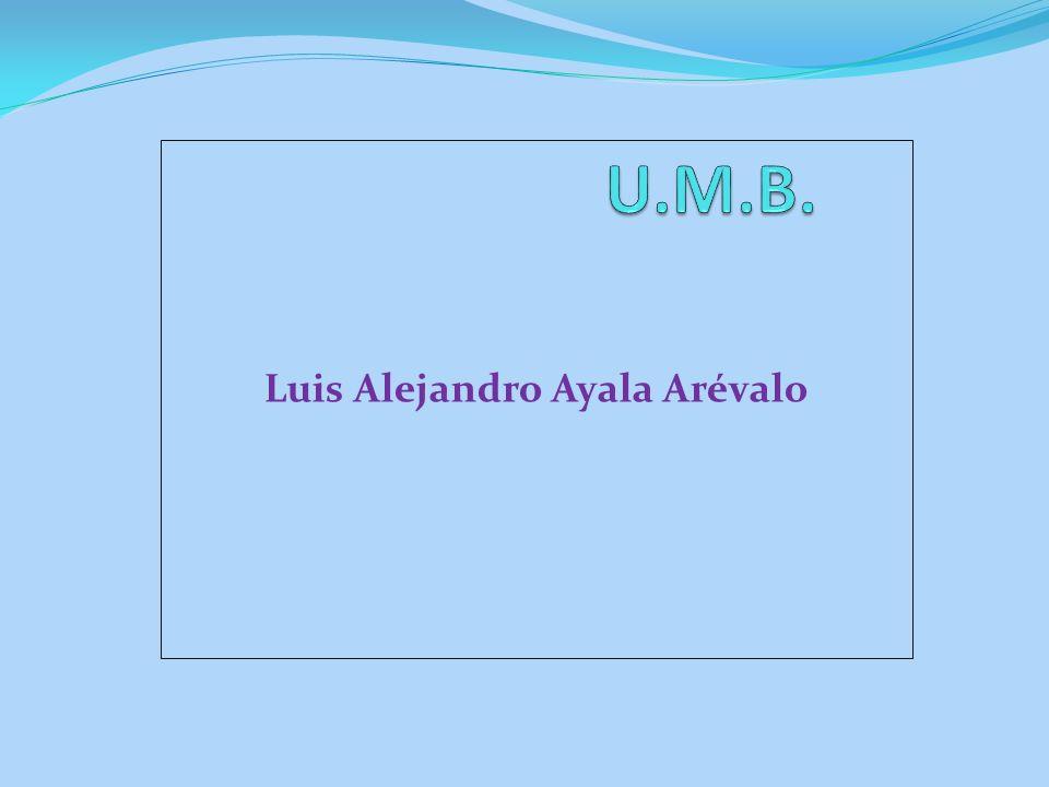 Luis Alejandro Ayala Arévalo