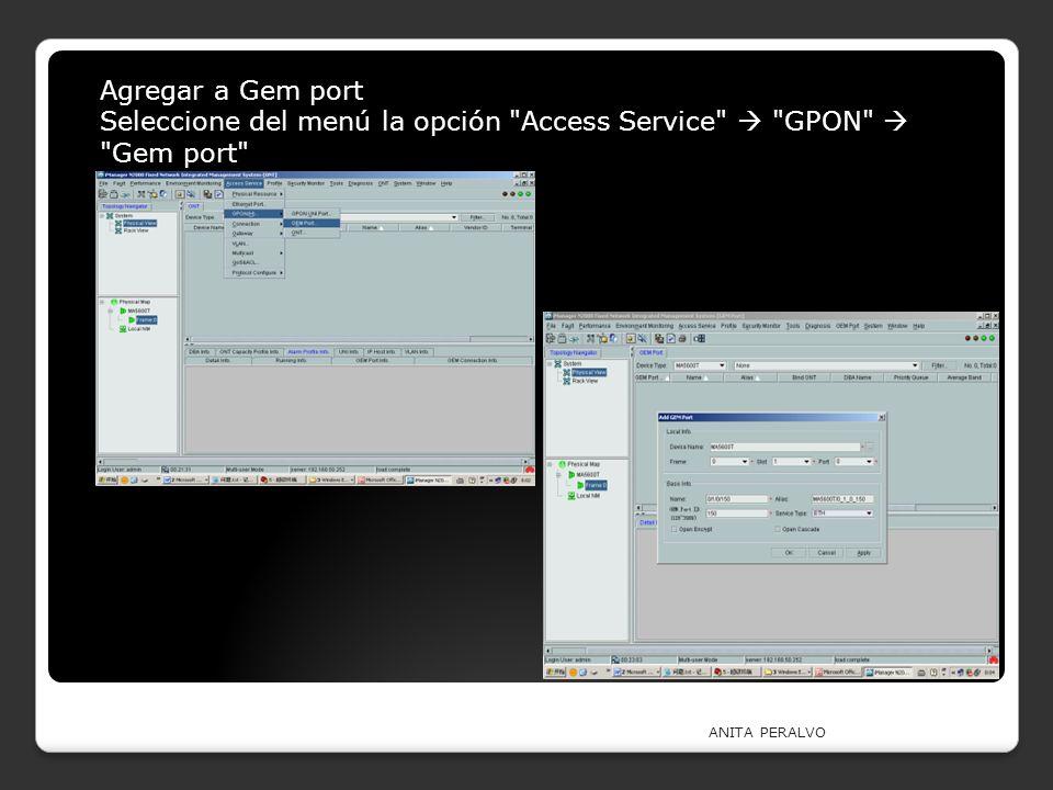Seleccione del menú la opción Access Service  GPON  Gem port