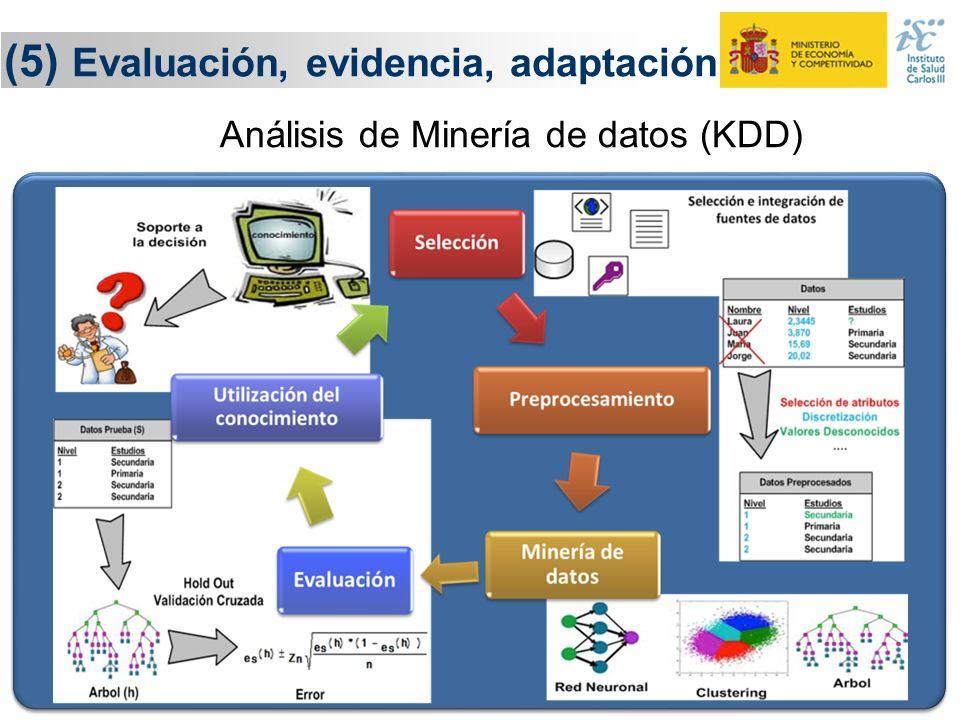 (5) Evaluación, evidencia, adaptación