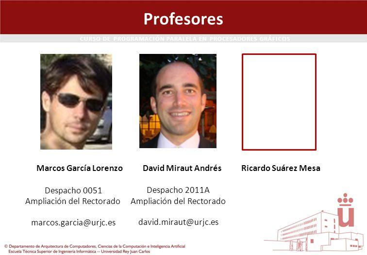 Profesores Marcos García Lorenzo David Miraut Andrés