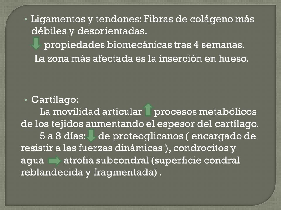 Ligamentos y tendones: Fibras de colágeno más débiles y desorientadas.