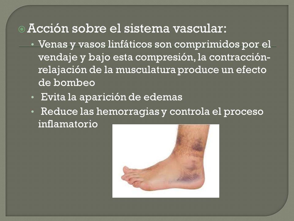 Acción sobre el sistema vascular: