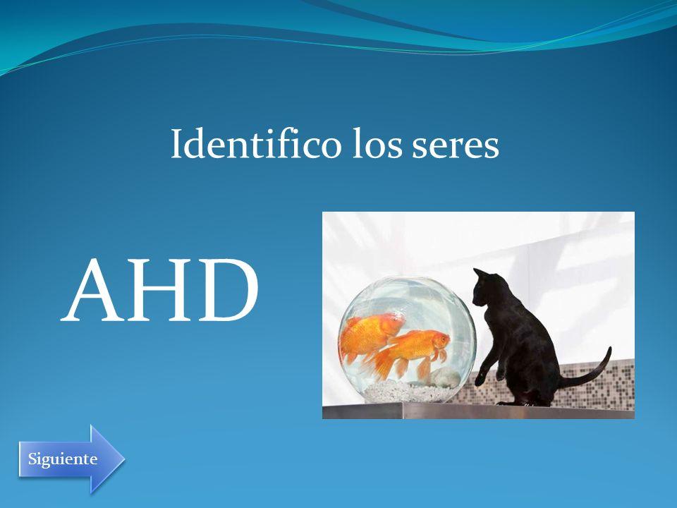 Identifico los seres AHD Siguiente