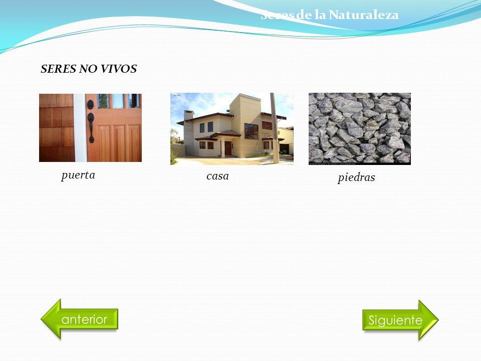 Seres de la Naturaleza SERES NO VIVOS puerta casa piedras