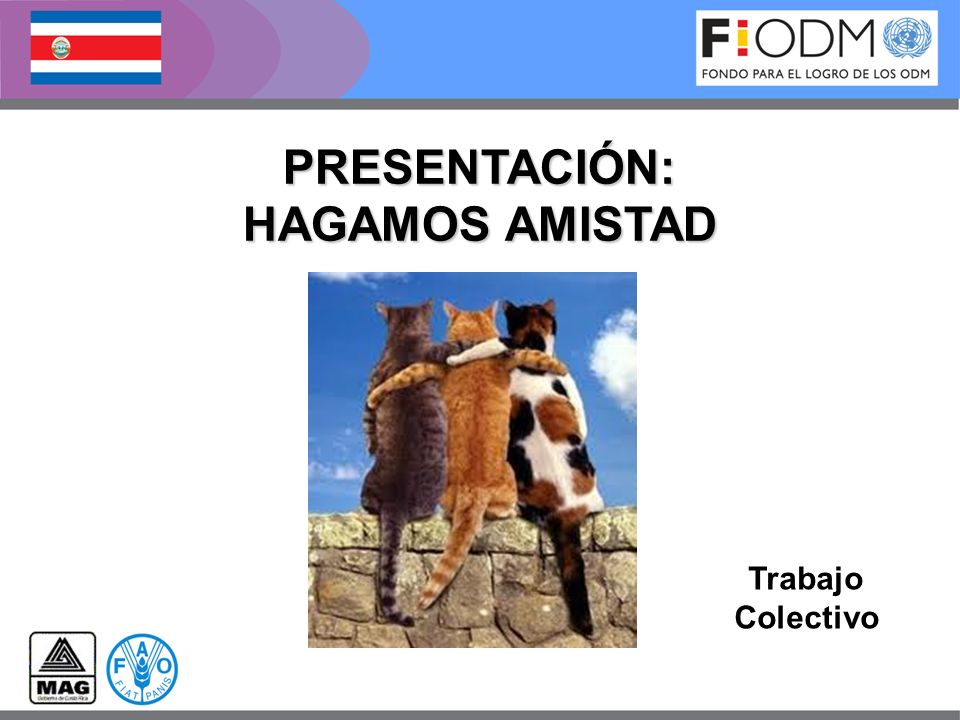 PRESENTACIÓN: HAGAMOS AMISTAD