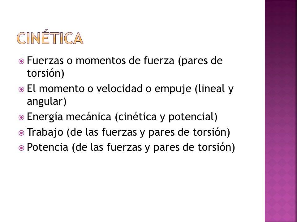 Cinética Fuerzas o momentos de fuerza (pares de torsión)