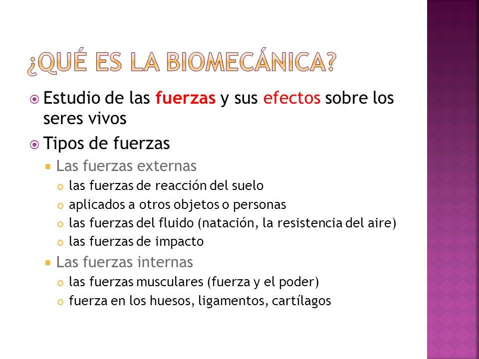 ¿Qué es la biomecánica Estudio de las fuerzas y sus efectos sobre los seres vivos. Tipos de fuerzas.