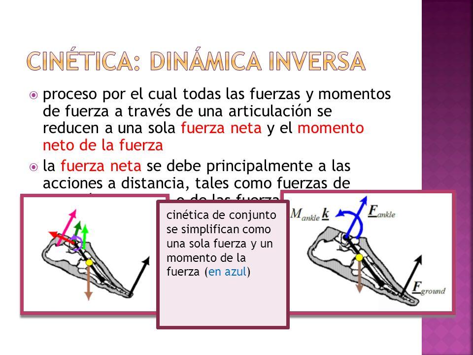 Cinética: dinámica inversa