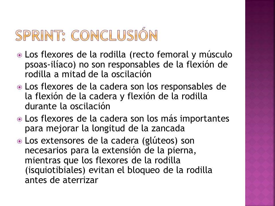 Sprint: conclusión