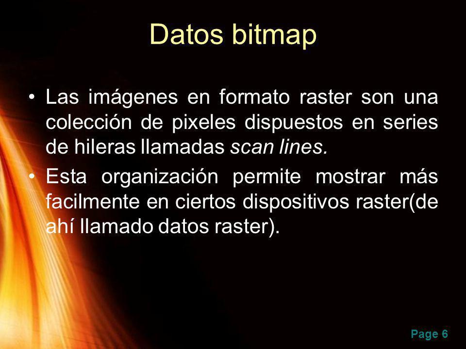 Datos bitmap Las imágenes en formato raster son una colección de pixeles dispuestos en series de hileras llamadas scan lines.