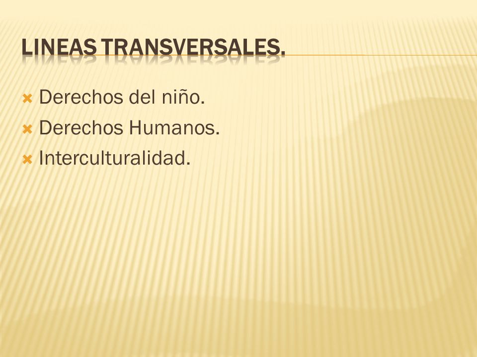 LINEAS TRANSVERSALES. Derechos del niño. Derechos Humanos.