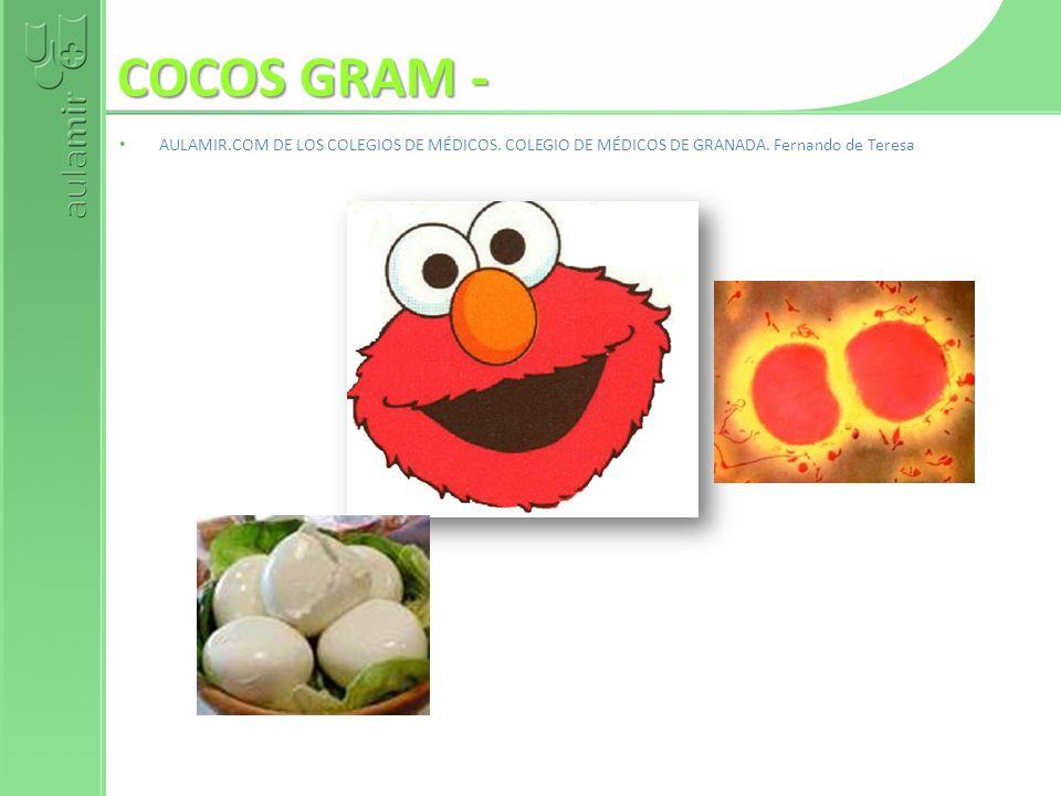 COCOS GRAM - AULAMIR.COM DE LOS COLEGIOS DE MÉDICOS.