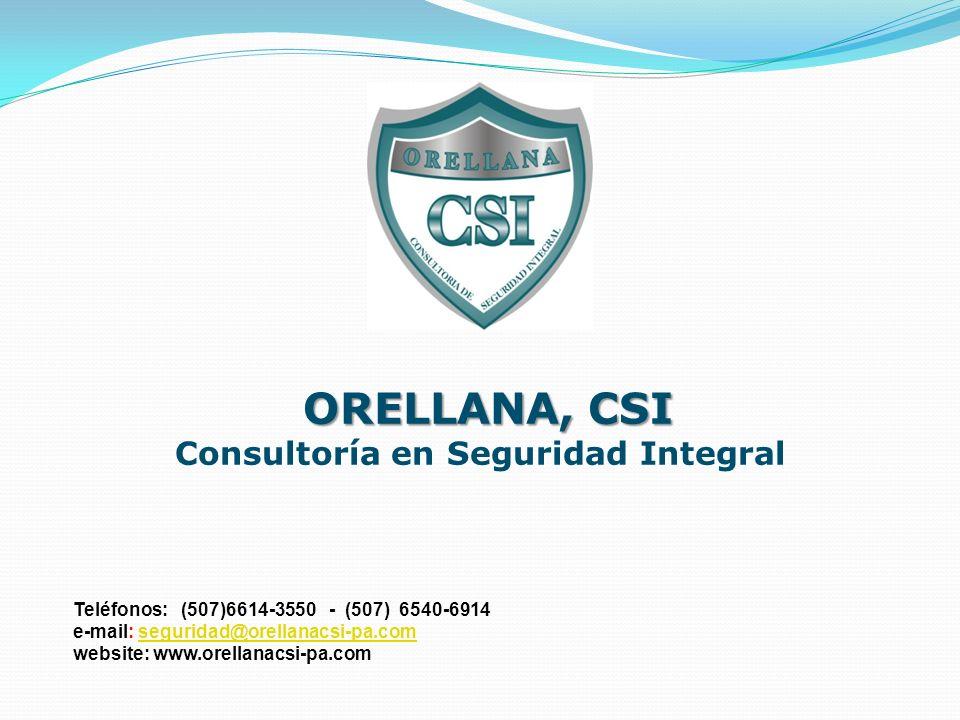 Consultoría en Seguridad Integral