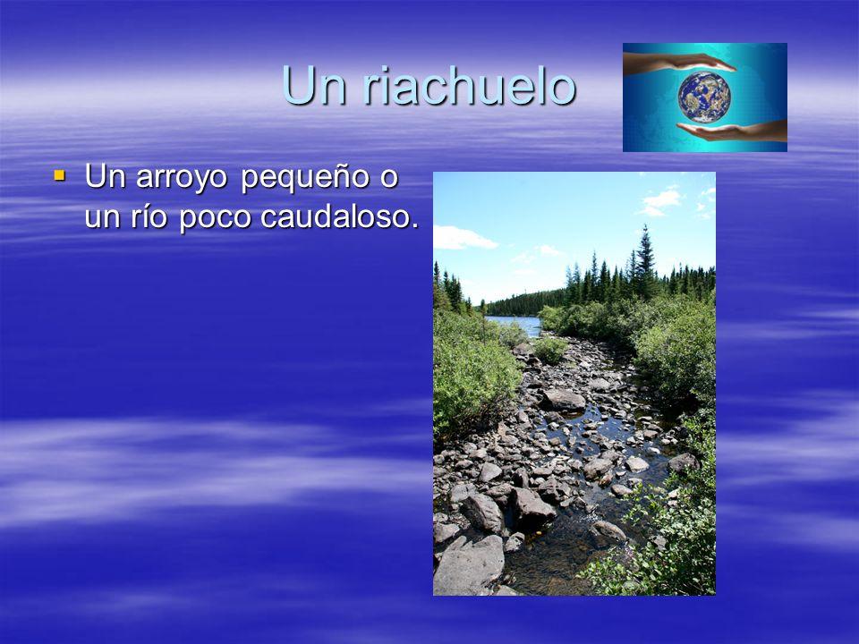 Un riachuelo Un arroyo pequeño o un río poco caudaloso.