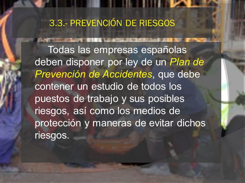 3.3.- PREVENCIÓN DE RIESGOS