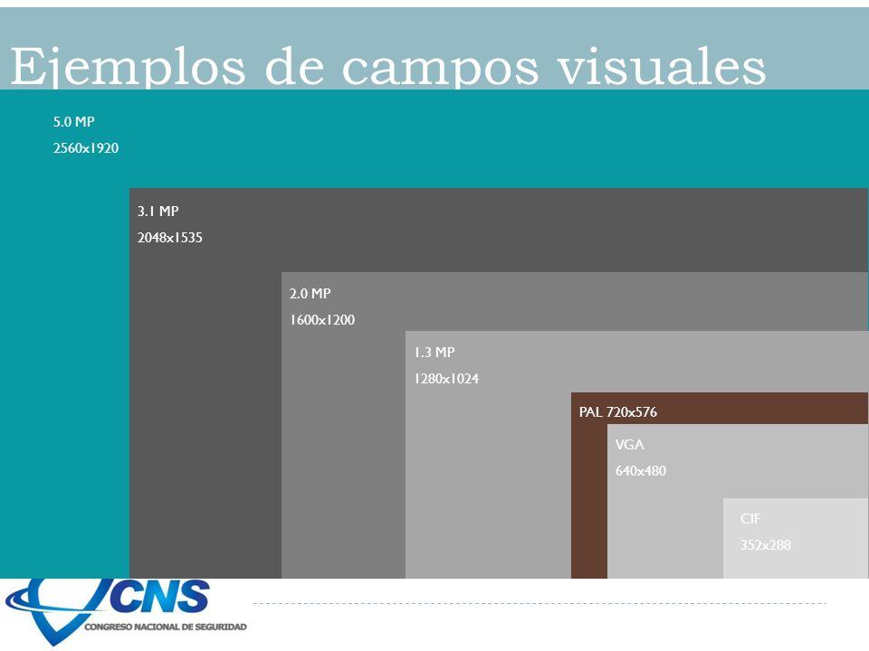 Ejemplos de campos visuales