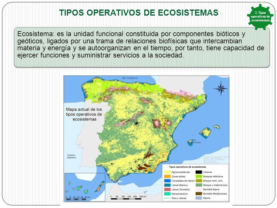 Tipos operativos de ecosistemas