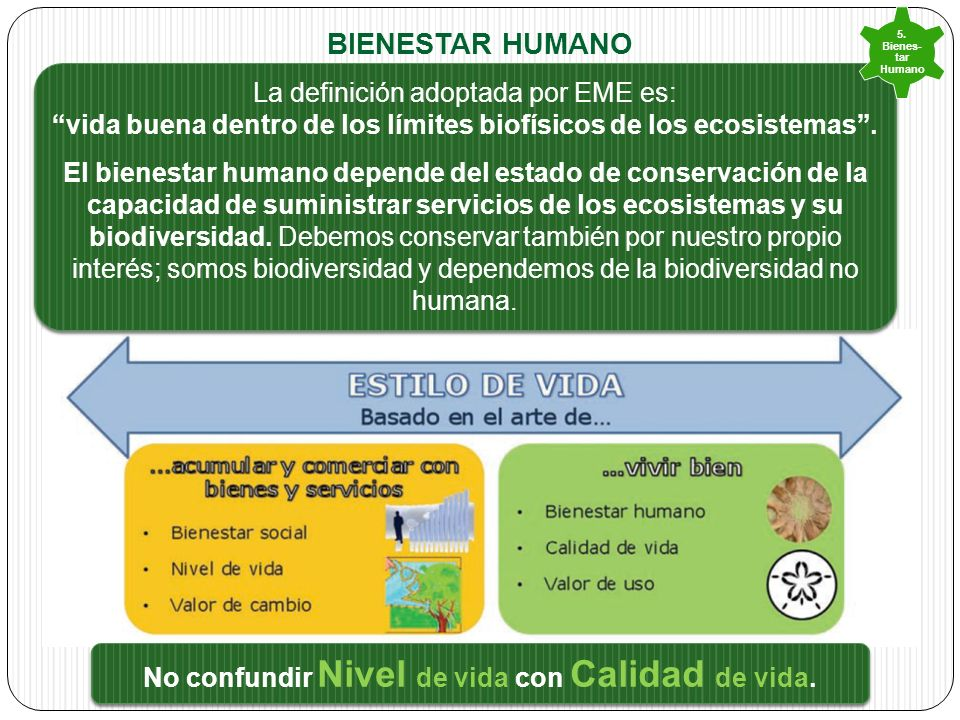 Bienestar humano La definición adoptada por EME es:
