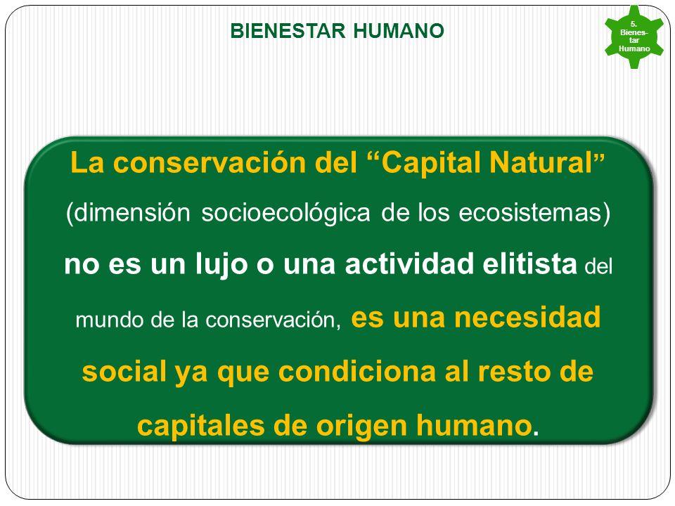 5. Bienes-tar Humano Bienestar humano.