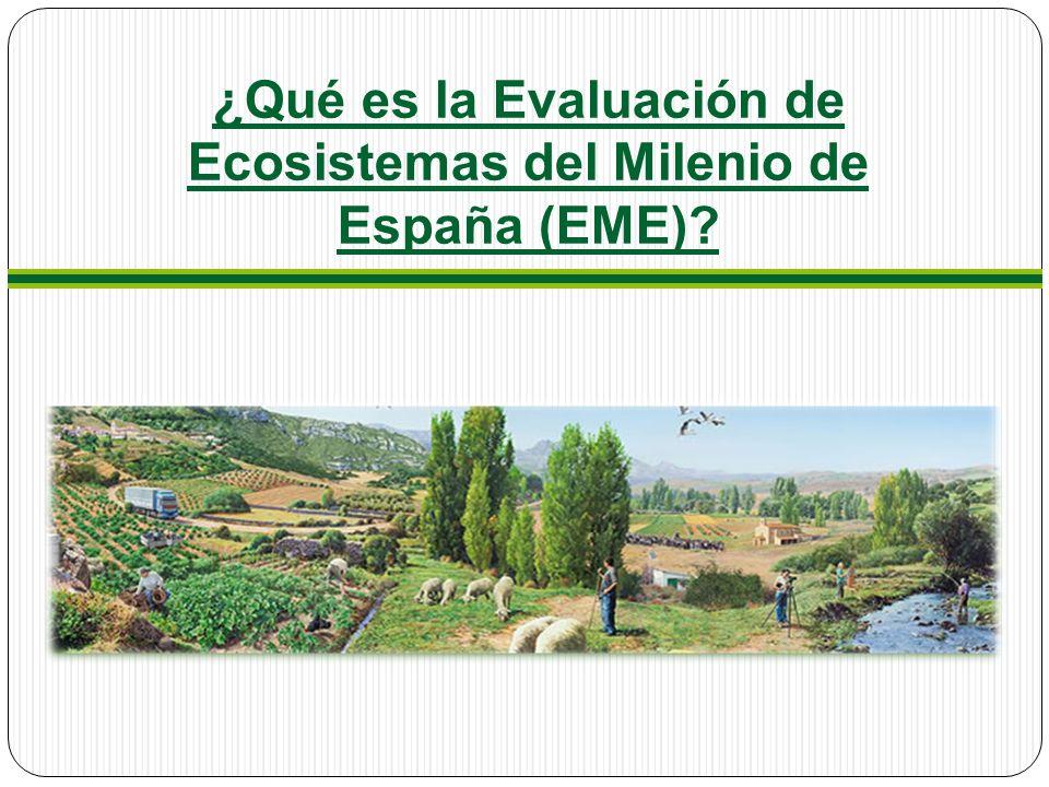 ¿Qué es la Evaluación de Ecosistemas del Milenio de España (EME)