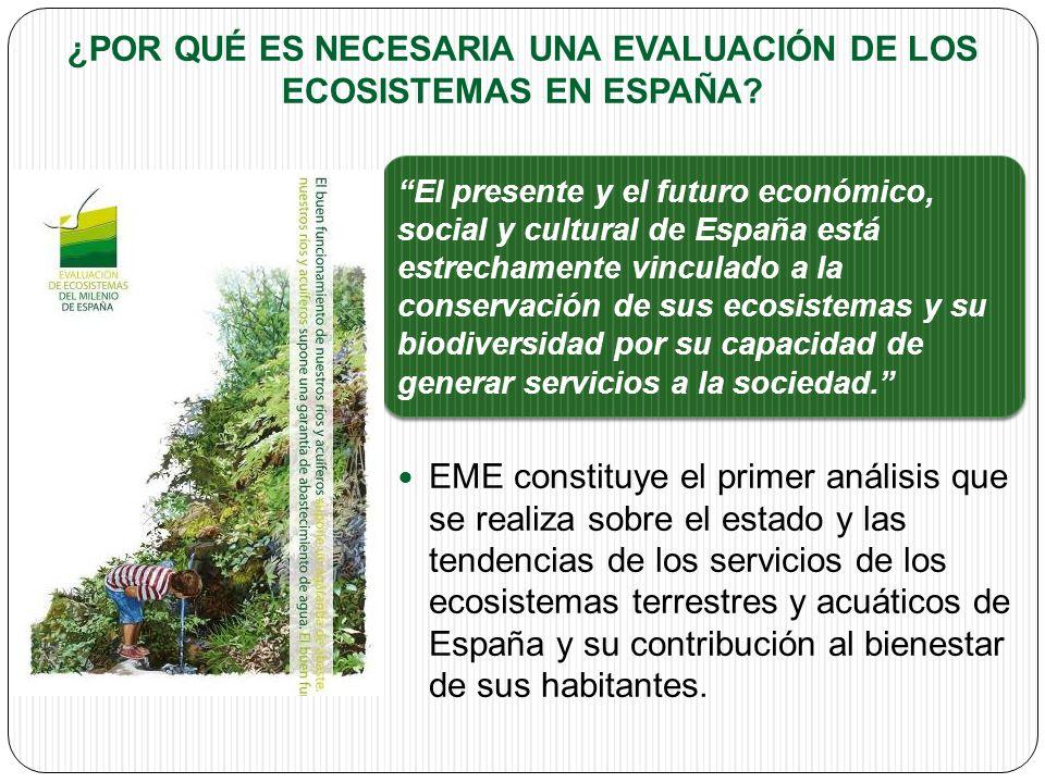 ¿POR QUÉ ES NECESARIA UNA EVALUACIÓN DE LOS ECOSISTEMAS EN ESPAÑA