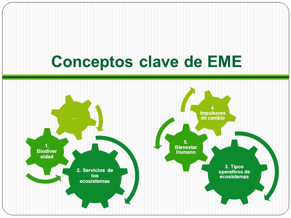 3. Tipos operativos de ecosistemas 2. Servicios de los ecosistemas