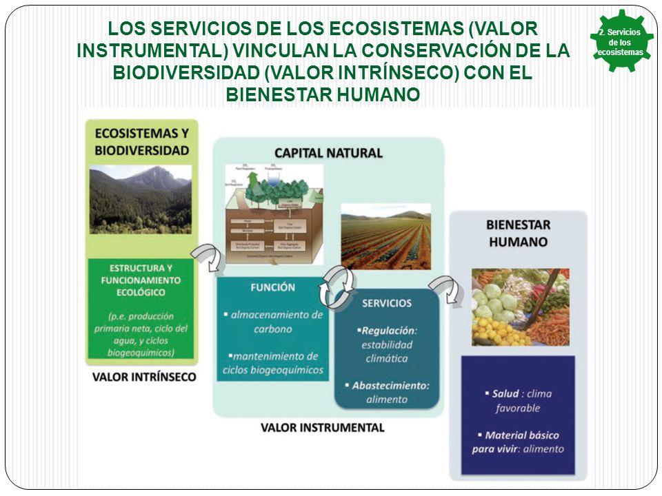 2. Servicios de los ecosistemas