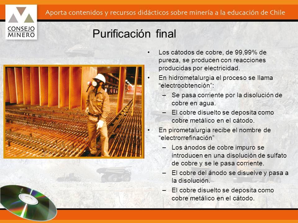 Purificación final Los cátodos de cobre, de 99,99% de pureza, se producen con reacciones producidas por electricidad.