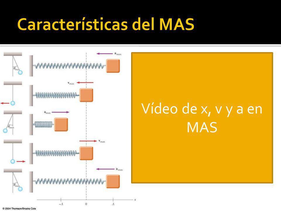 Características del MAS