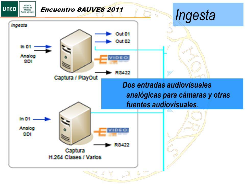 Ingesta Encuentro SAUVES 2011.
