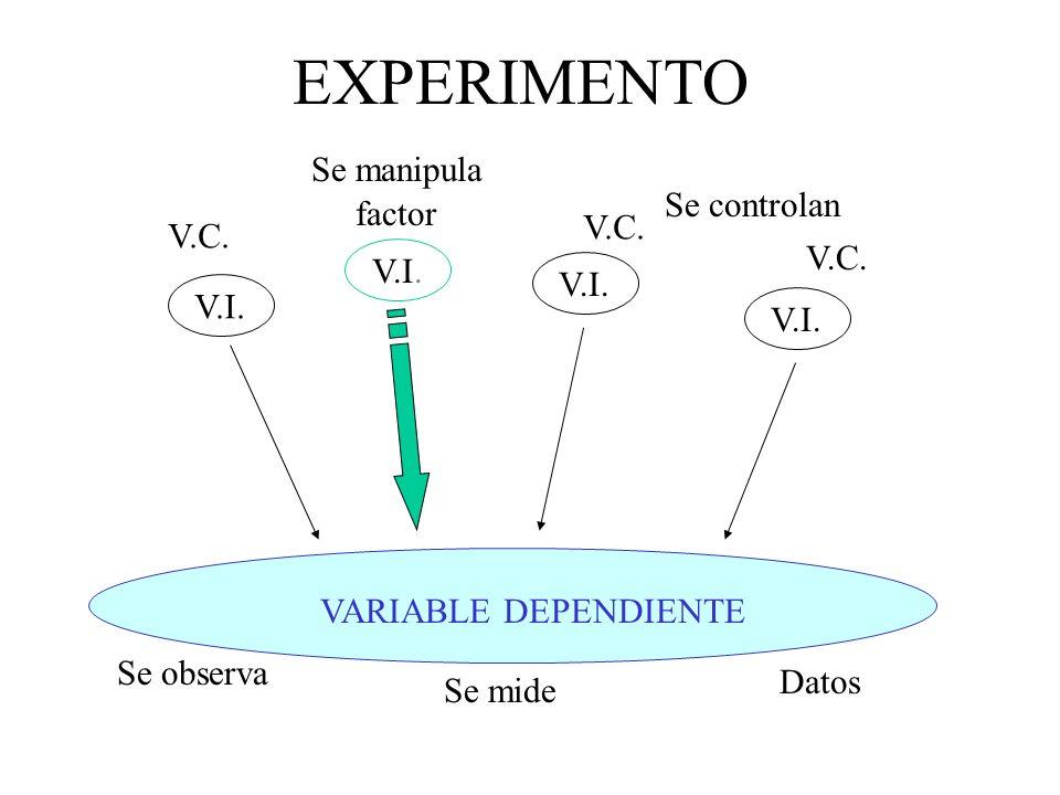 EXPERIMENTO Se manipula Se controlan factor V.C. V.C. V.C. V.I. V.I.